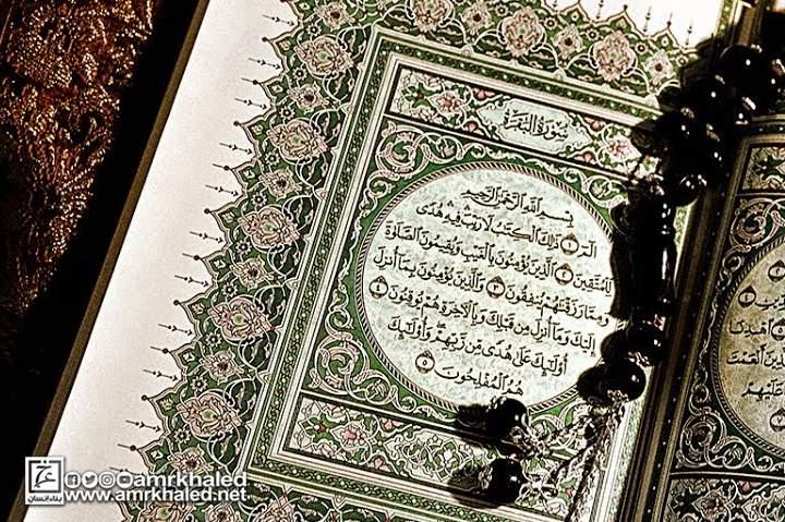 تحميل كتاب هل قرأنا القرآن أم على قلوب أقفالها